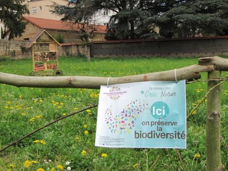 La biodiversité à Mongré en 6ème