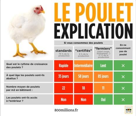 2 photo 8bis poulet